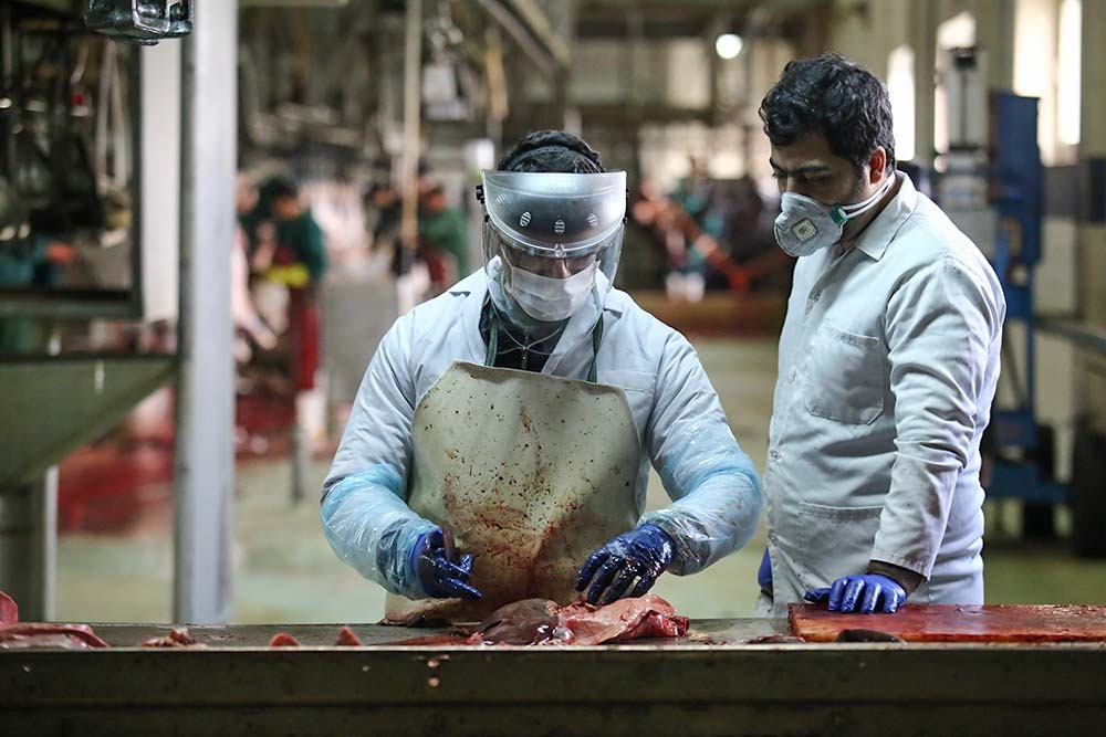 کنترل ۵ مرحله ای گوشت در کشتارگاه صنعتی تبریز